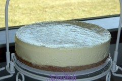 Plain Cheesecake sm