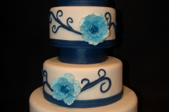 Blue wild Rose Front (1024x681)